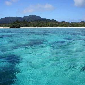 Ishigaki_Island at FlightGurus.com