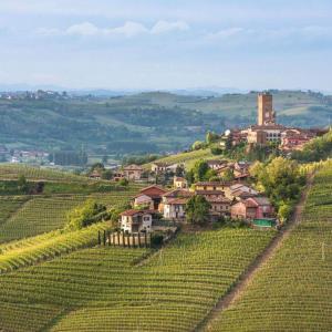 Barbaresco Piedmont