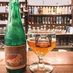 beers-in-ghent-belgium