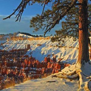 bryce-canyon (1)